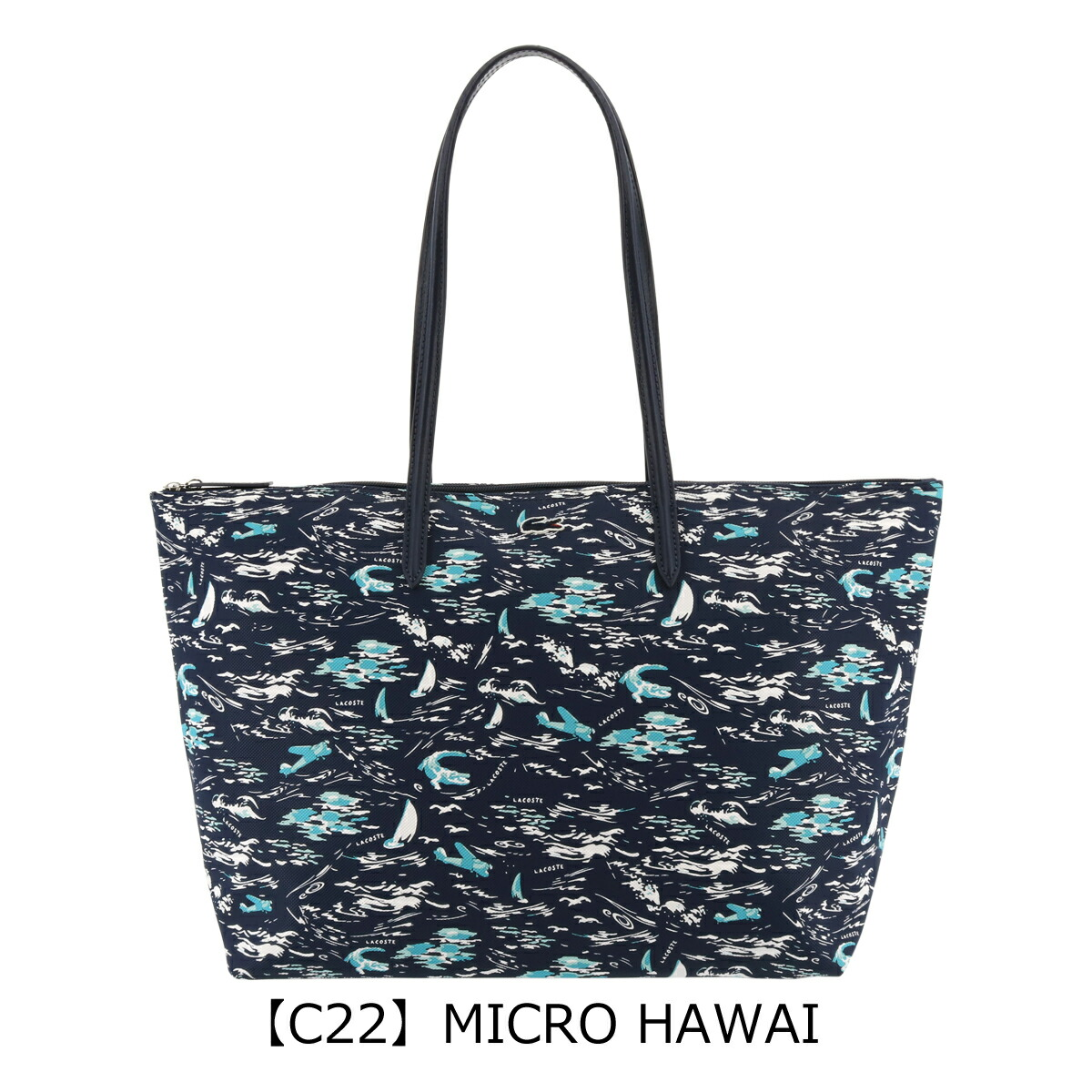 【C22】MICRO HAWAI