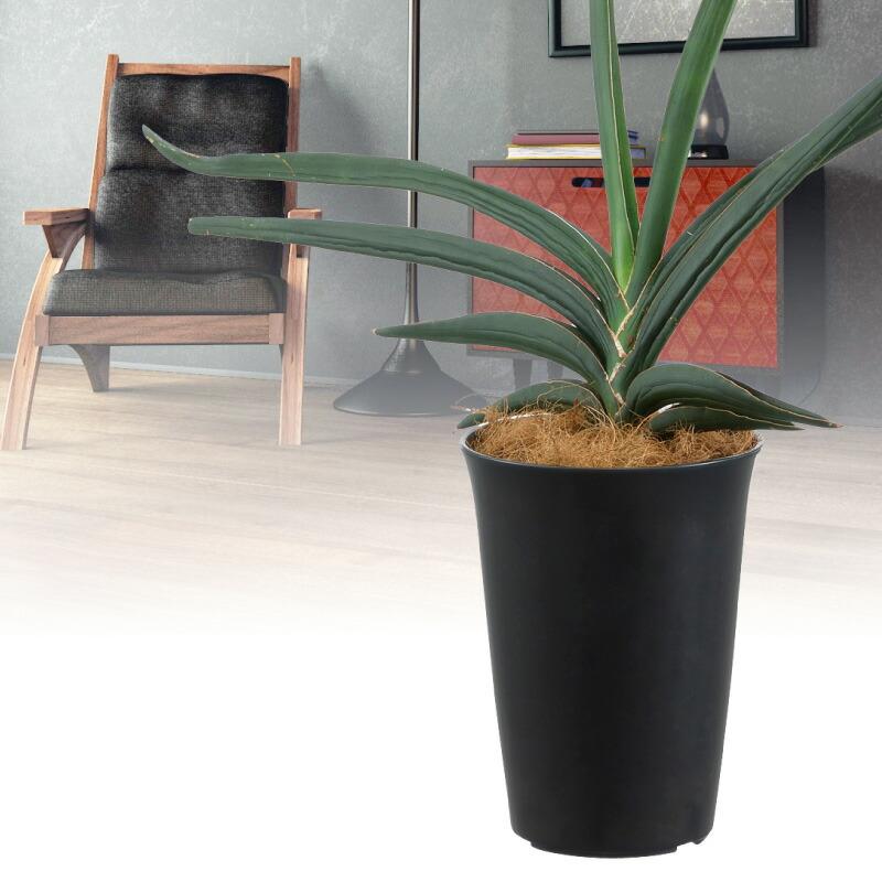 観葉植物鉢 丸