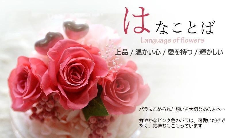 ピンクのバラに込められた花言葉の意味について