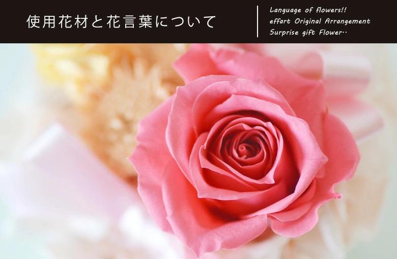 オンリーワンプリザで使用している花材が解る拡大写真