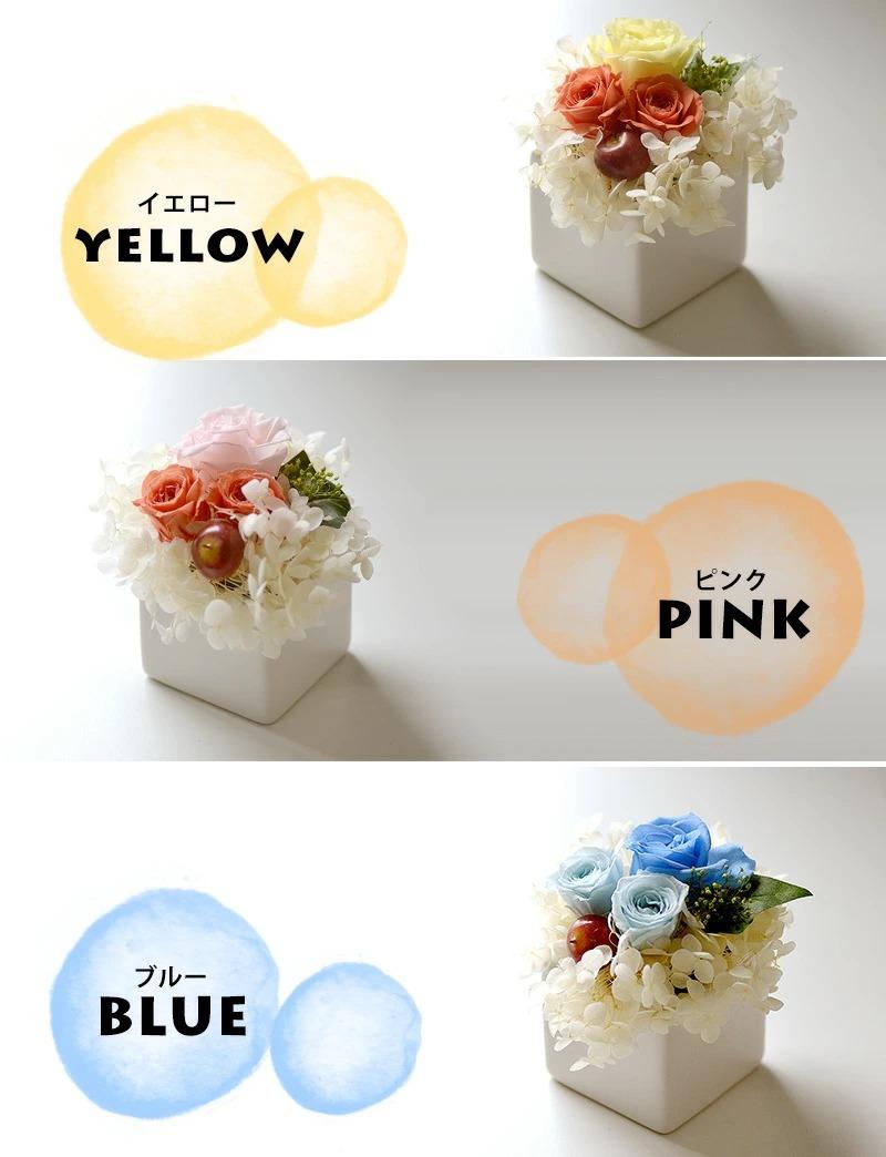 イエロー、ピンク、ブルーの3色から選べます