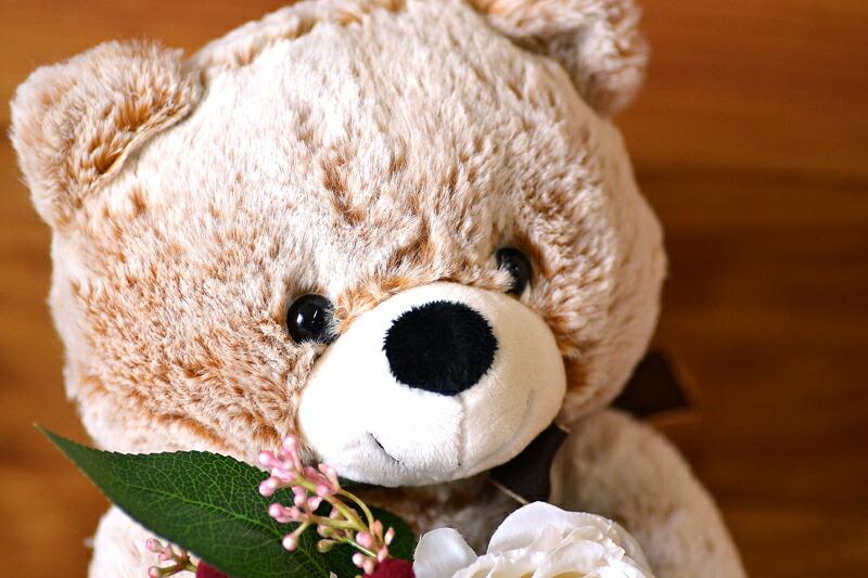 熊のぬいぐるみのかわいい顔の画像