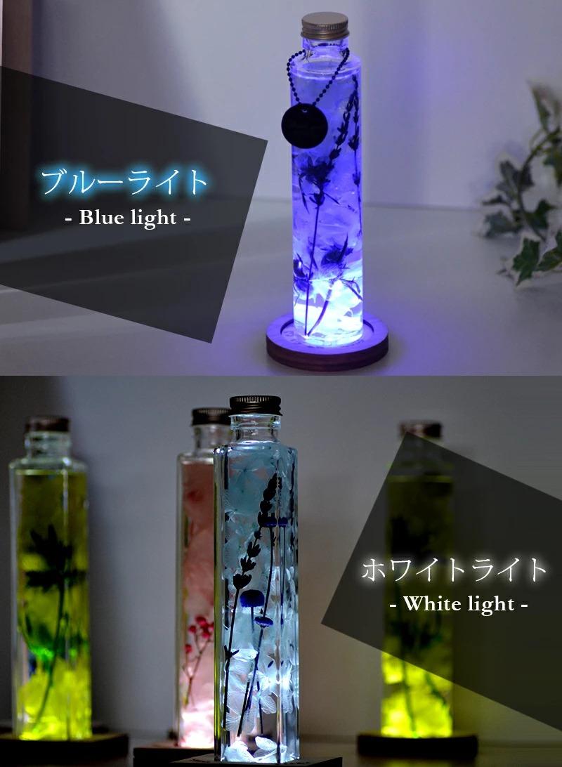 ブルーライトとホワイトライトの点灯イメージ画像