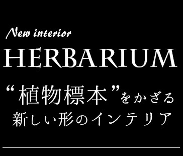 植物標本を飾るという形の新しいインテリア、それがエフアートオリジナルのメッセージ入りハーバリウム