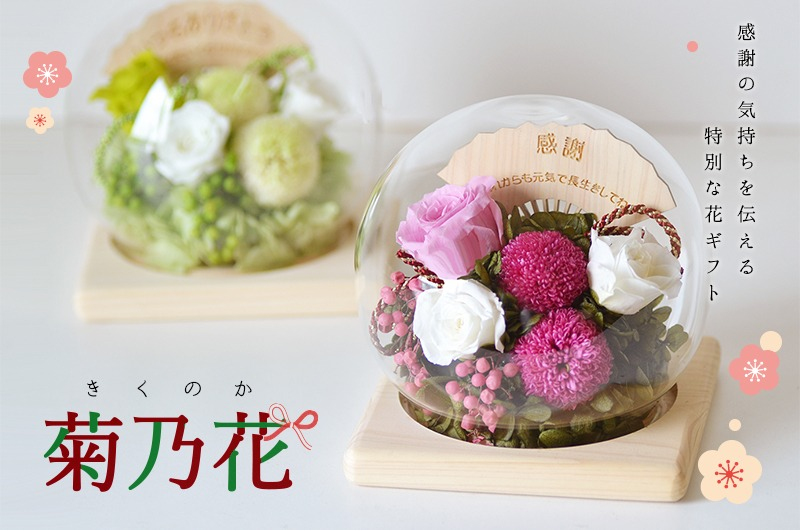 名入れプリザーブドフラワー専門店 エフアートアレンジメント 名入れドーム型プリザROSAシリーズ菊乃華メイン画像