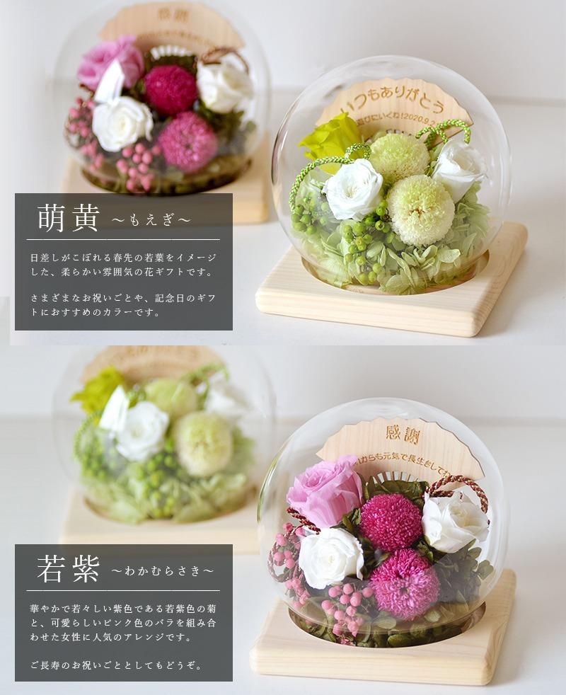 選べる2カラー萌黄or若紫
