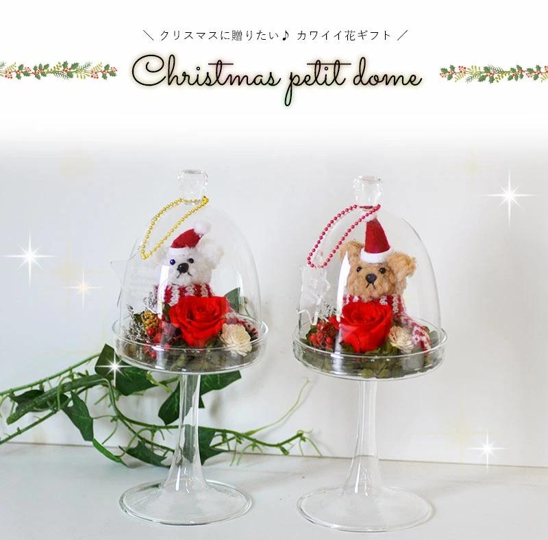 クリスマスに贈りたいプチドームベアークリスマスバージョン