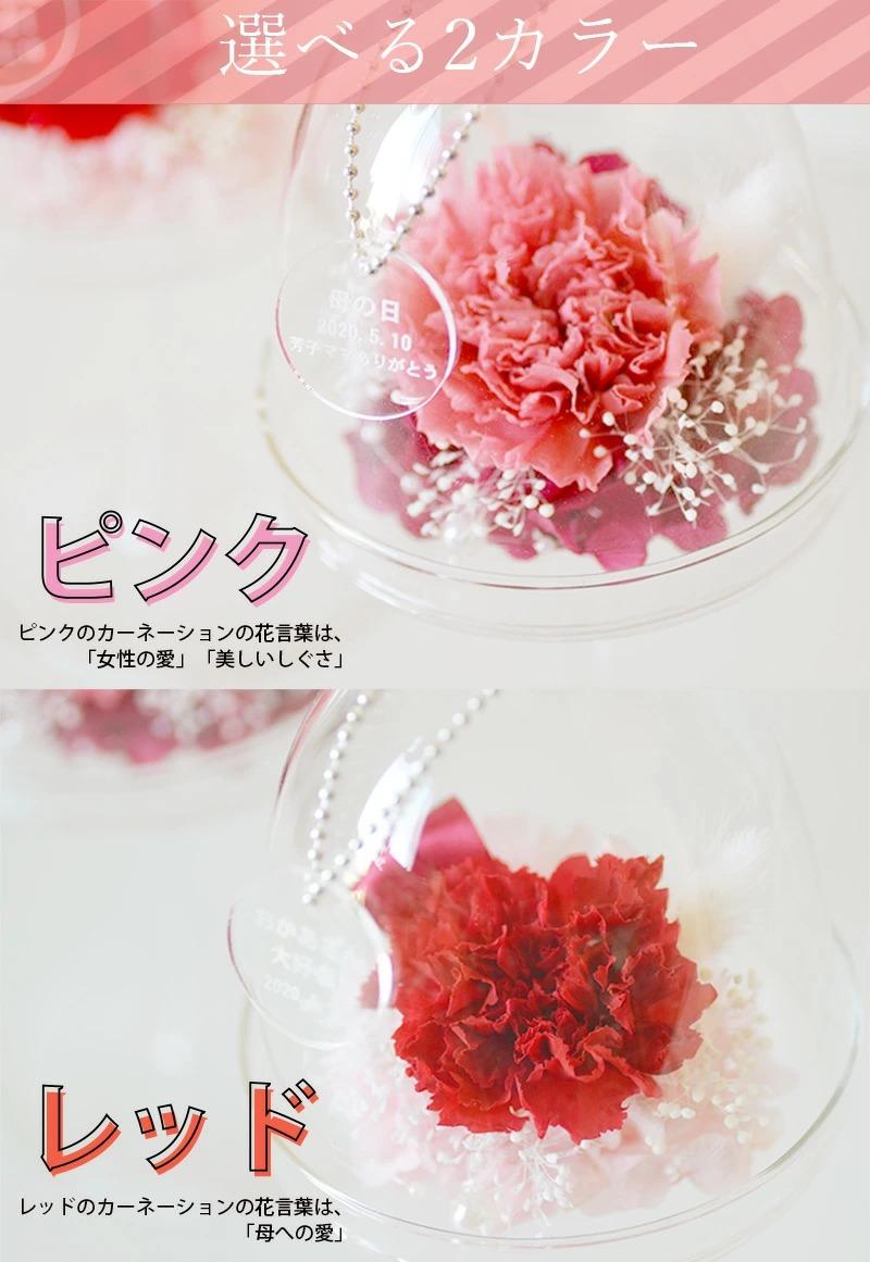 選べるカラーはピンクまたはレッド。どちらもメインのカーネーションのカラーでお選びください