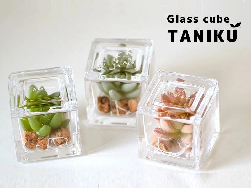 多肉植物のフェイクをインテリアとしてアレンジメントした名入れガラスキューブ