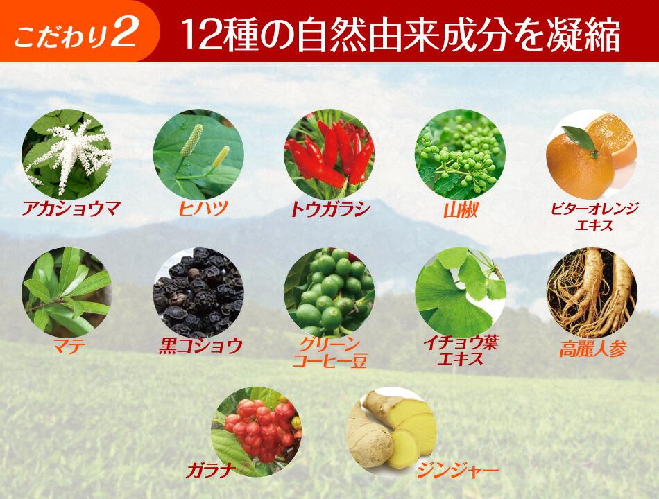 12種の自然由来成分を凝縮