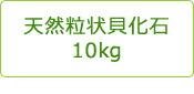 天然粒状貝化石10kg