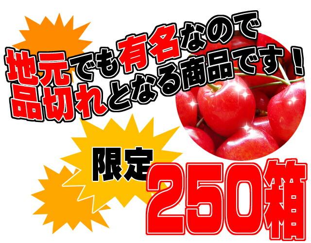 佐藤錦 山形県産 数量限定 250箱
