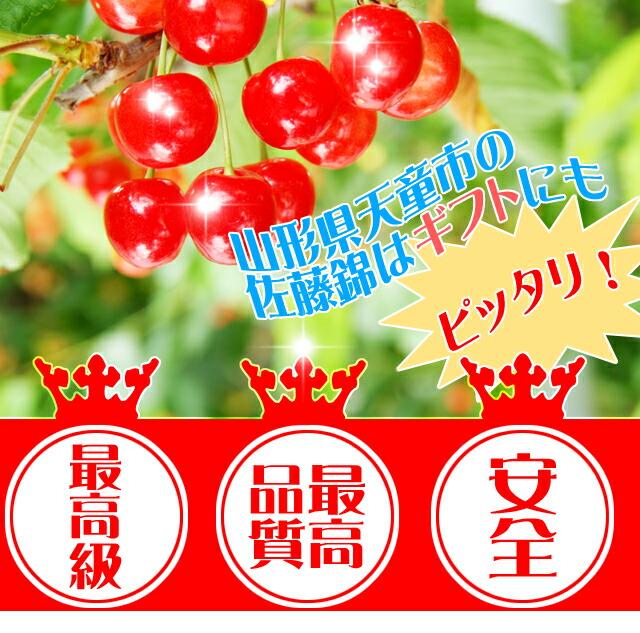 最高級 高級品質 安全 佐藤錦 山形県産