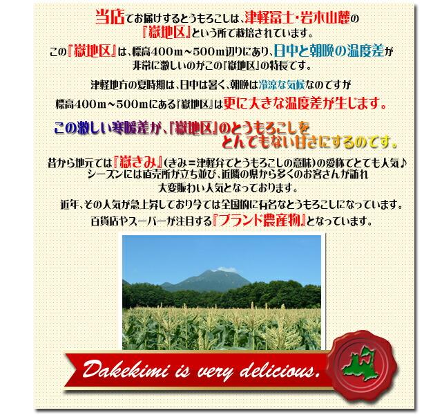 青森県産 嶽きみ とうもろこし