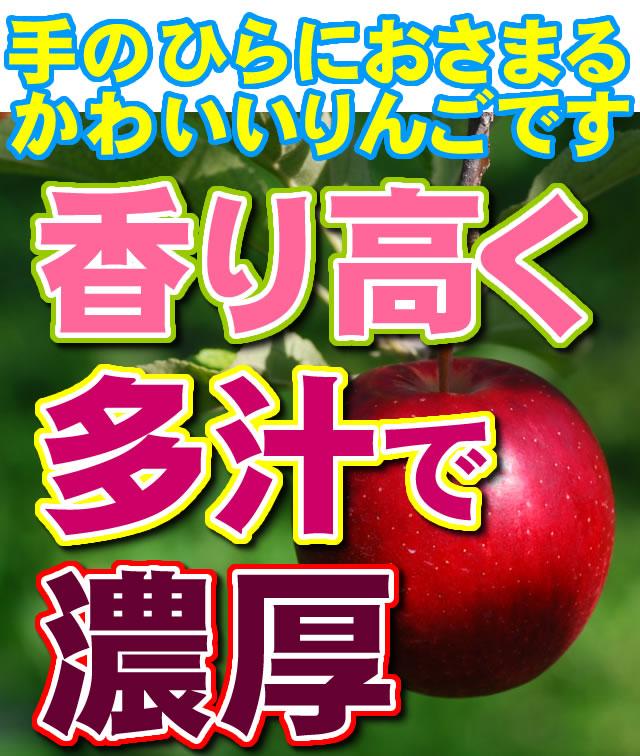 掌に収まる可愛いりんご