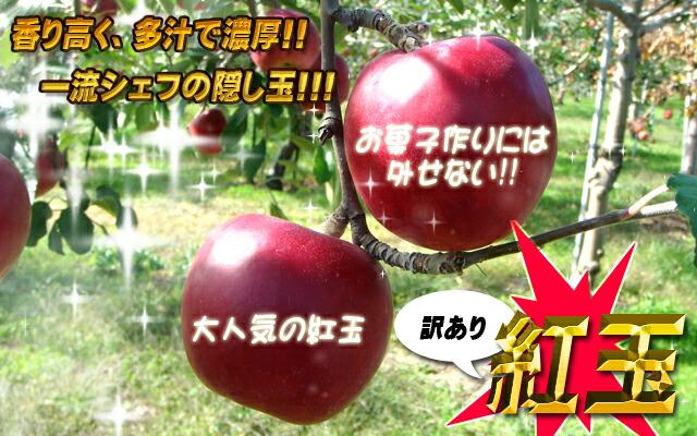 青森県産 紅玉