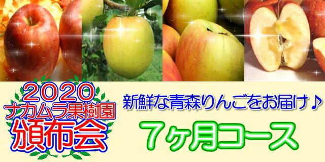 青森県産りんご頒布会7ヶ月コース