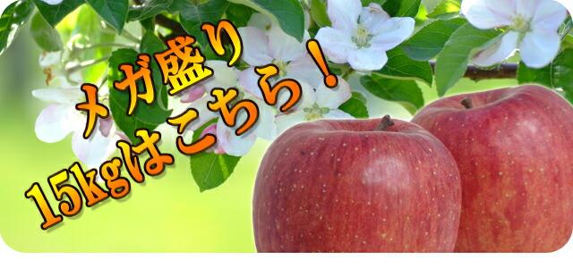 青森県産【訳あり】サンふじ メガ盛り15kgはこちら!