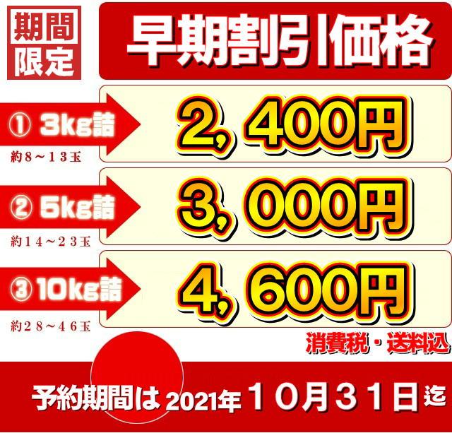 【予約商品】訳ありサンふじ価格表