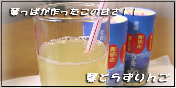 【青森県産】葉とらずりんご100%ストレートジュース