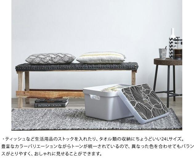 Sunware 収納ボックス 24Lサイズ Sigma Box  収納ケース おしゃれ プラスチック タオル おもちゃ 幅35 奥行45 高さ18 ギフト プレゼント