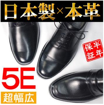 待望の5Eシリーズ!