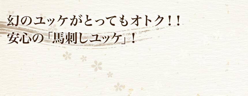 幻のユッケがとってもオトク!!安心の「馬刺しユッケ」!