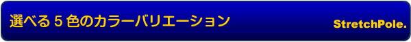選べる5色のカラーバリエーショ  ン