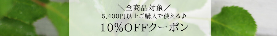 5400円以上のお買い上げで10%オフクーポンはこちら!
