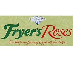 バラ苗フライヤーローゼス Fryer's Roses