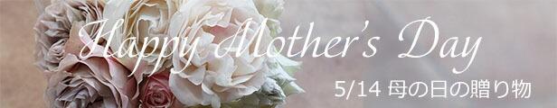 バラ苗母の日のプレゼントトップページ