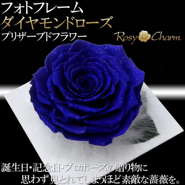 大輪の青い薔薇ダイヤモンドローズ
