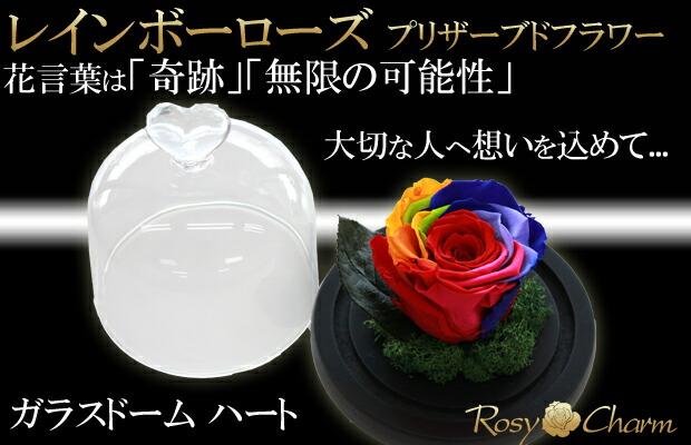 ガラスドーム レインボーローズ プレゼント