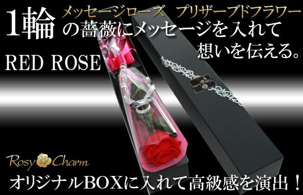 赤バラ1本 BOX