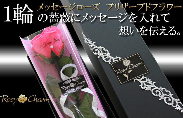 メッセージローズ プリザーブドフラワーホットピンクのバラ