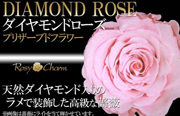 ダイヤモンドローズ ピンクのバラ