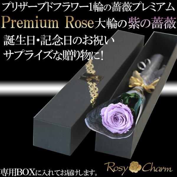 誕生日・記念日・プロポーズに紫の薔薇