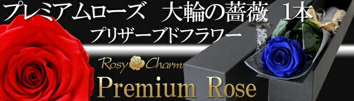 プレミアムローズ大輪の薔薇1本プリザーブドフラワー