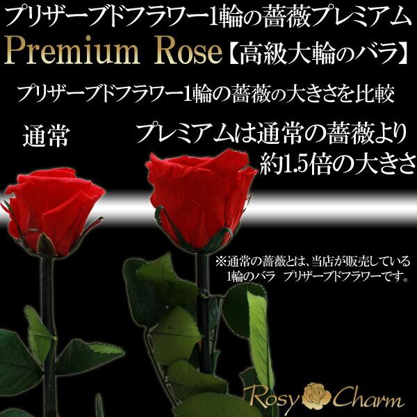 大輪の薔薇 プリザーブドフラワー