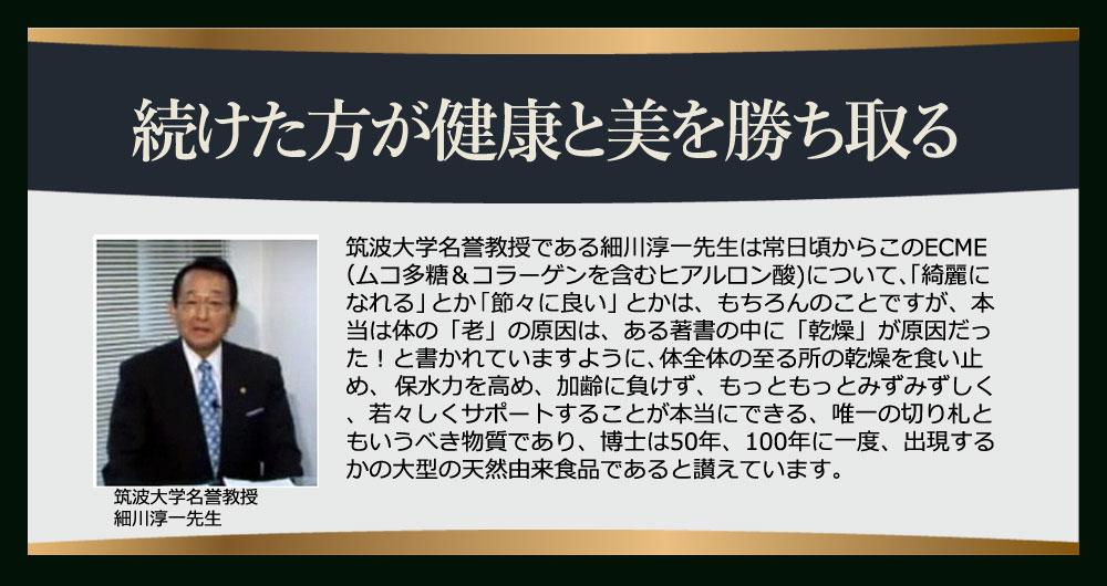 細川淳一先生のコメント