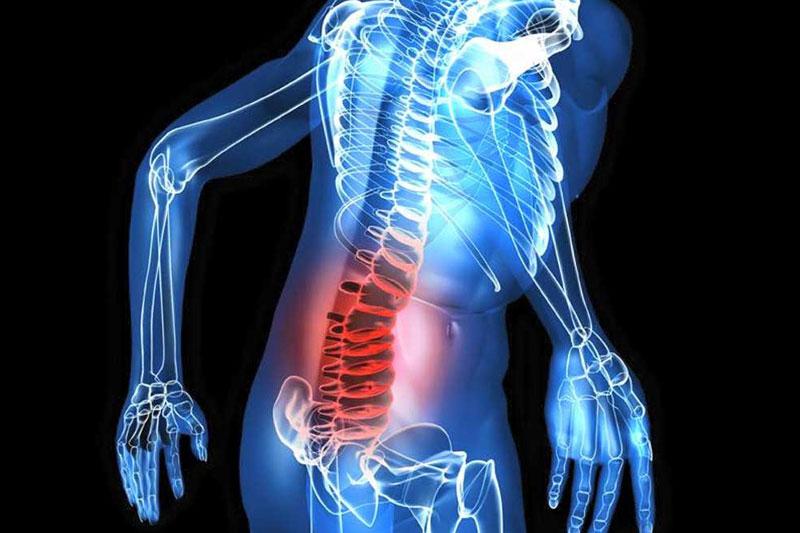 コラーゲン 腰痛
