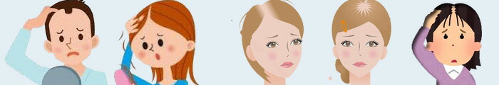 核酸 薄毛の関係