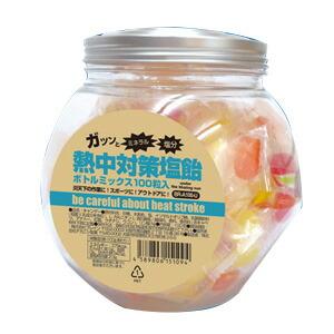熱中対策塩飴 ボトルミックス100粒入 4味 BR-A100U