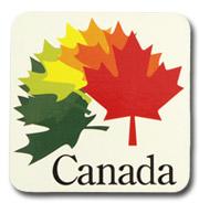 カナダコースター