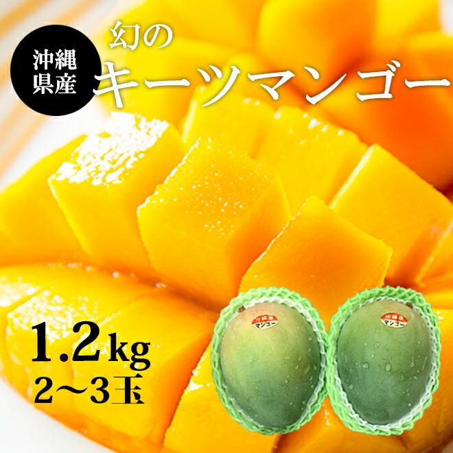 沖縄産キーツマンゴー