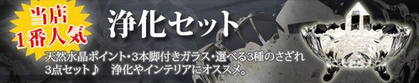 浄化セット(当店オリジナル)