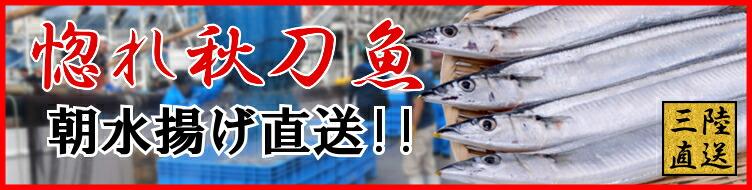 産地よりお届け 秋刀魚