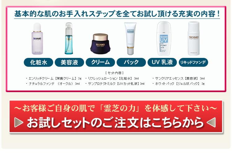 洗顔石鹸・化粧水・美容液・エイジングクリーム・パック・UV日焼け止め乳液・リキッドファンデーションが全部入ったそせいスキンケアシリーズのトライアルキット(お試しセット・サンプル)が450円送料無料!ツヤとハリのある透明感に満ちた美肌へ。エイジングケアの為の基礎化粧品です。