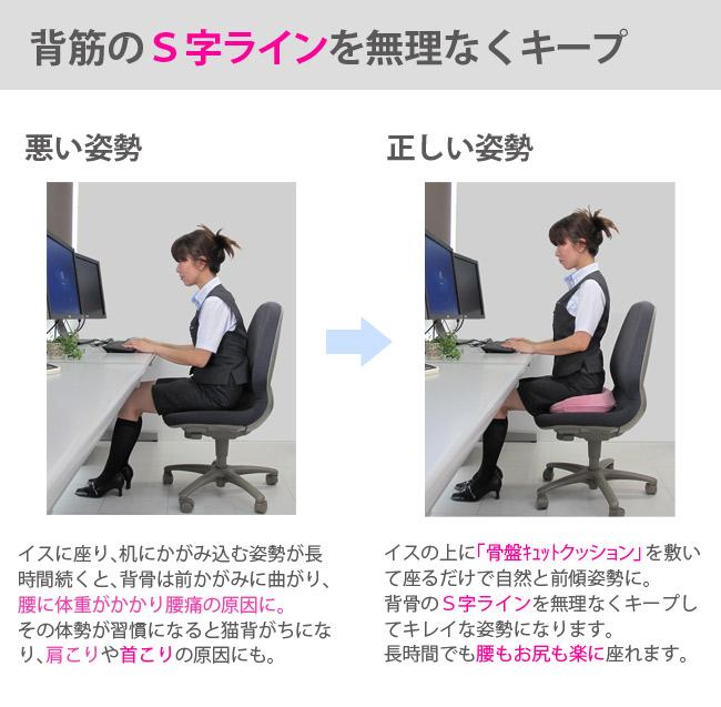 背筋のS字ラインを無理なくキープ 悪い姿勢 正しい姿勢 イスに座り、机にかがみ込む姿勢が長時間続くと、背骨は前かがみに曲がり、腰に体重がかかり腰痛の原因に。その体勢が習慣になると猫背がちになり、肩こりや首こりの原因にも。 イスの上に「骨盤キュットクッション」を敷いて座るだけで自然と前傾姿勢に。背骨のS字ラインを無理なくキープしてキレイな姿勢になります。長時間でも腰もお尻も楽に座れます
