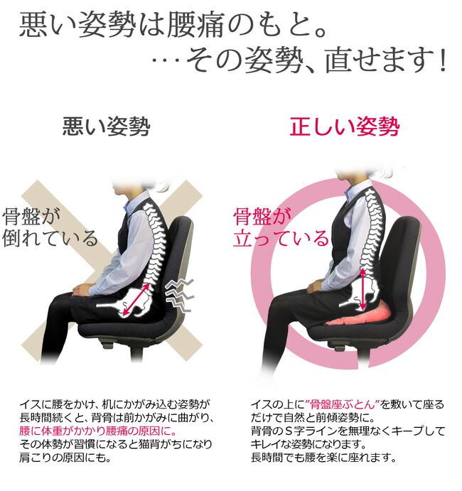 """悪い姿勢は腰痛のもと。・・・その姿勢、変えられます!イスに腰をかけ、机にかがみ込む姿勢が長時間続くと、背骨は前かがみに曲がり、腰に体重がかかり腰痛の原因に。その体勢が習慣になると猫背がちになり肩こりの原因にも。イスの上に""""骨盤座ぶとん""""を敷いて座るだけで自然と前傾姿勢に。背骨のS字ラインを無理なくキープしてキレイな姿勢になります。長時間でも腰を楽に座れます。"""